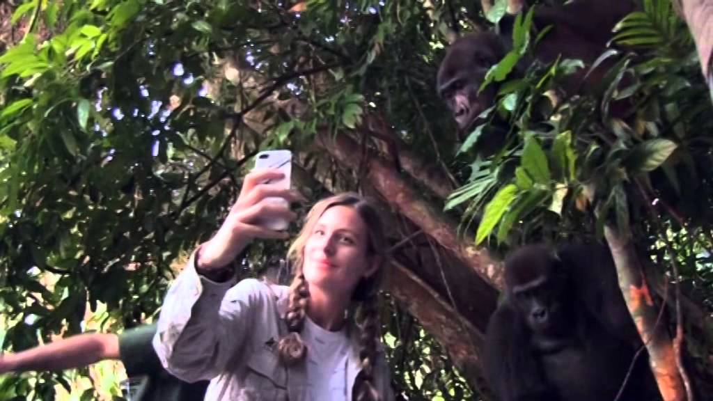 Ona je odrasla sa gorilama… 12 godina kasnije su se ponovo sreli. Ono što je uslijedilo ostavlja bez riječi!
