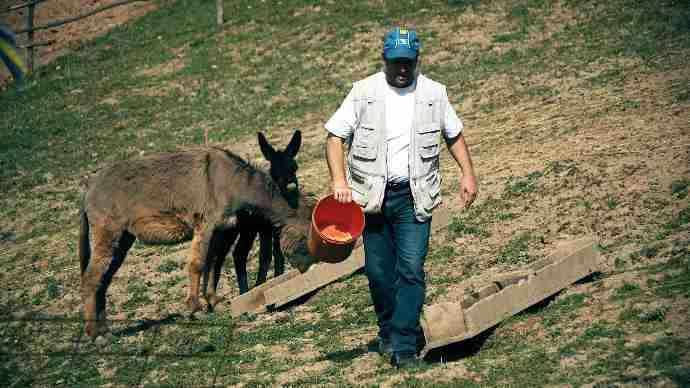 Neobičan biznis mladića iz Zavidovića: Vjerujete li da litar ovog mlijeka košta 100 KM?!