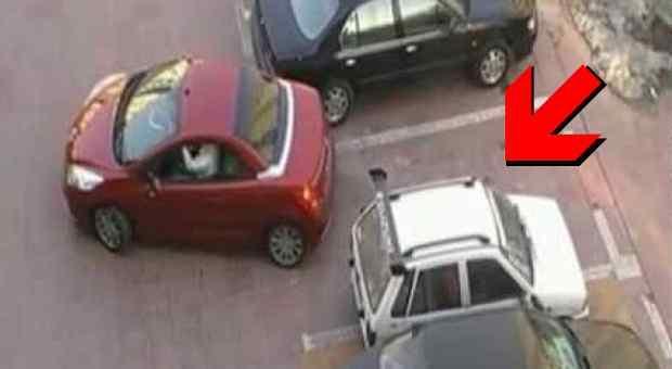 parkiranje-690x480_compressed