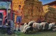 Miki nudi početnu platu od 500 eura za posao na njegovoj farmi, plus smještaj i hranu, ali se niko ne javlja: Svi se prave gospoda, niko neće da radi!
