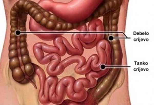 Zašto nastaju naslage u crijevima i kako ih se prirodno riješiti