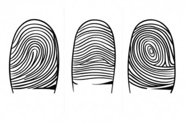 Vaši otisci prstiju mnogo govore o vama. Evo i šta…