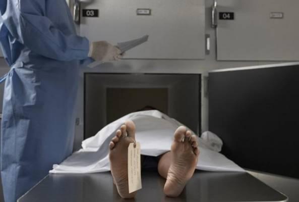 Naučnici dobili zeleno svijetlo za vraćanje mrtvih u život…