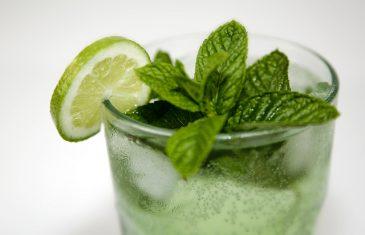 Domaći sok od nane ( RECEPT )