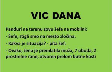 VIC DANA: Mjesto zločina.