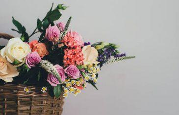 Koji vas cvijet najviše privlači: SAZNAJTE ŠTA TO OTKRIVA O VAMA!