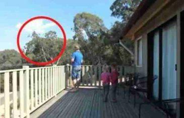 Žena je snimala supruga i ćerke kako se igraju na terasi, a tako je snimila i nešto do sada neviđeno!