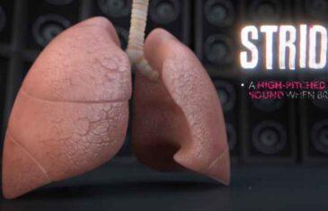 Evo kako zvuče ZDRAVA, a kako PLUĆA POD UPALOM: 4 vrste disanja koja morate znati!