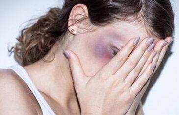 Vodič za žrtve nasilja u porodici: Kako i kome prijaviti slučaj, kako doći do pomoći i zaštititi se od nasilnika